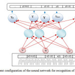 Figure 4 the present configuration of the neural network for recognition of phonemic tasks.