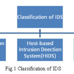 Fig.1 Classification of IDS