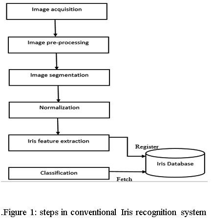Iris Biometric Modality: A Review | Oriental Journal of