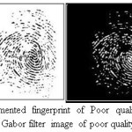 Figure 10.Segmented fingerprint of Poor quality image taken from DB1 and Gabor filter image of poor quality