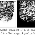 Figure 11.Segmented fingerprint of good quality image taken from DB2 and Gabor filter image of good quality