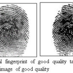Figure 5.Original fingerprint of good quality taken from DB1 and Segmented image of good quality