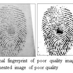 Figure 8.Original fingerprint of poor quality image taken from DB2 and Segmented image of poor quality