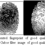 Figure 9.Segmented fingerprint of good quality image taken from DB1 and Gabor filter image of good quality