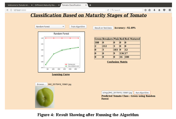A Machine Learning Approach to Determine Maturity Stages of Tomatoes